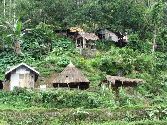 טיולים אקזוטיים בפסח -נפאל ,פילפינים,ויאטנם