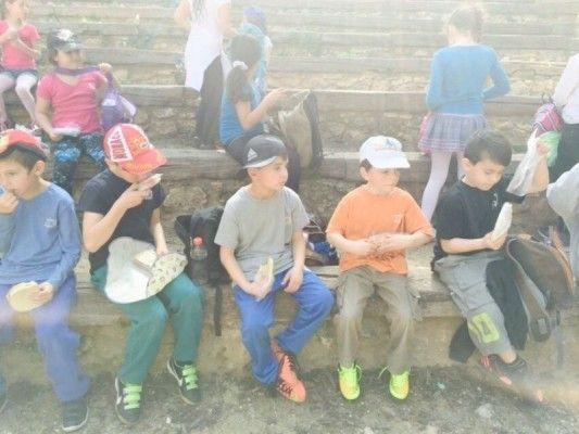 ילדי בית ספר מילקין אריאל ביום כיף בנאות קדומים