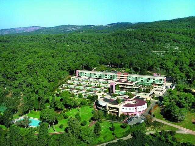 מבט מהאוויר לעבר מלון יערות הכרמל