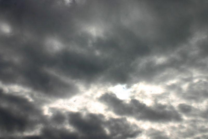סערת ג'ונאס