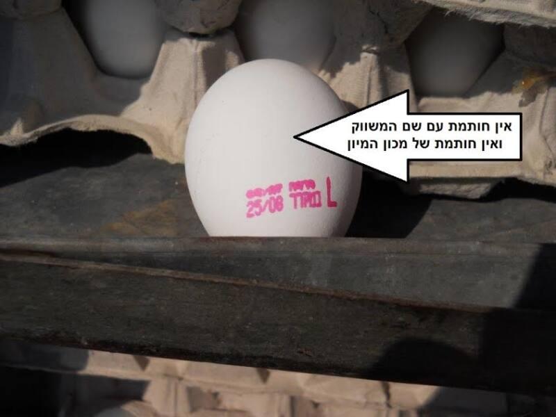 סוכלה הברחת 36,000 ביצים במחסום המנהרו