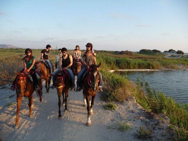 רכיבה על סוסים ביריד התיירות האזורי. צילום: עופר שנער