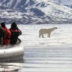 קרוזים ייחודיים לאנטארקטיקה ולחוג הארקטי