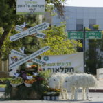 פארק חקלאות ישראלית תערוכות מרהיבות של פרחים פירות וירקות