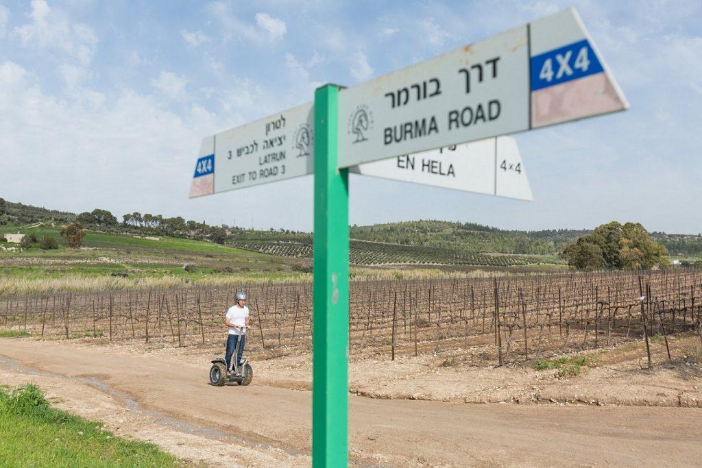 חוצה ישראל בסגווי