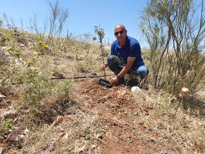 מנכל הבטחוניסטים בנטיעת עץ זית לזכר הנופלים צילום הביטחוניסטים