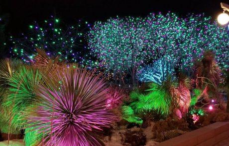 הגן הבוטני בירושלים – חגיגת אוכל אורות וטבע