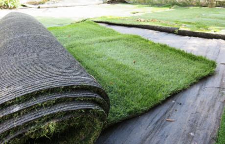 הכי קרוב לדשא אמיתי – דשא סינטטי