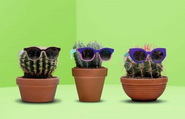 סווטש מפתיע הקיץ עם  משקפי שמש בהתאמה אישית