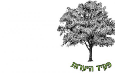 """אתר """"עצי מורשת"""" סיפורם של כ-1,500 עצים"""