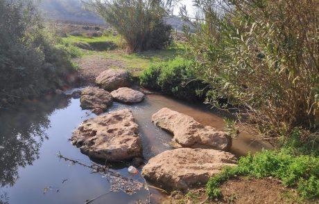 לראות, לחיות, לטעום ולהריח בעמק יזרעאל