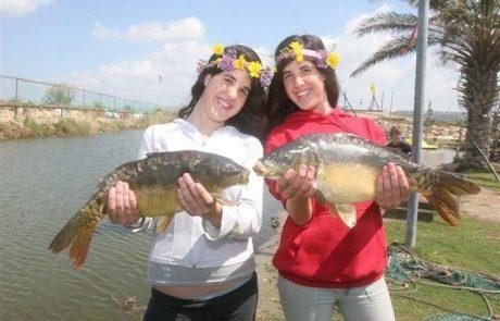יריד תיירות ופסטיבל קרפיון בפארק הדיג מעיין צבי