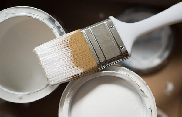 לבד בצבע: באילו עבודות תצטרכו צבעי ומתי תוכלו לצבוע בעצמכם?
