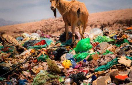 השרה להגנת הסביבה גילה גמליאל  – חד פעמי לא בטבע שלי