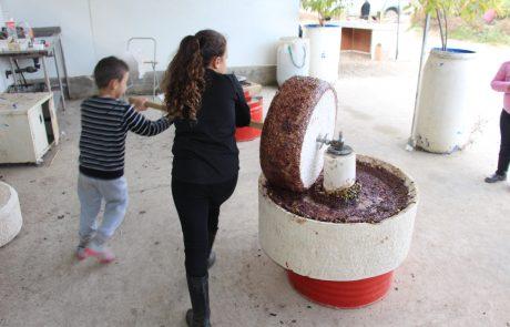 """פסטיבל  """"חג השמן הישראלי"""" בחנוכה בסימן הצדעה ליישובי הדרום"""