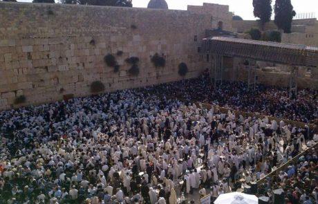 כהן הוא שם המשפחה הנפוץ ביותר בקרב היהודים