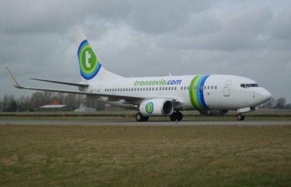 טראנסאוויה תפעיל בחורף 2 טיסות בשבוע מאמסטרדם  לאילת