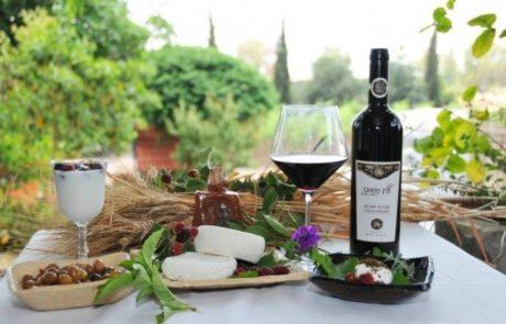 בואו ניפגש  בגן הפסלים על כוס יין וגבינה טובה
