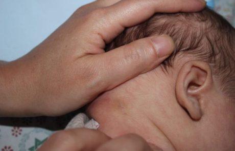 תינוק בן חודש וחצי נעקץ על ידי נדל ארסי