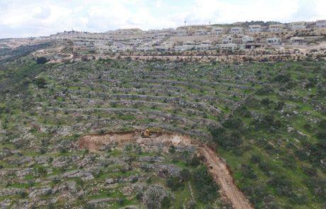 הפלסטינים השתלטו על שטחים בסמוך ללשם