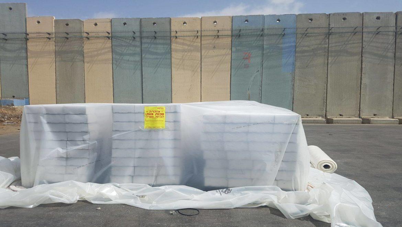 משלוח של 20 אלף לולבים הועבר מעזה לשיווק בישראל