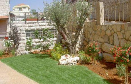 הנחיות מקצועיות לטיפול בגינה לקראת שנת השמיטה