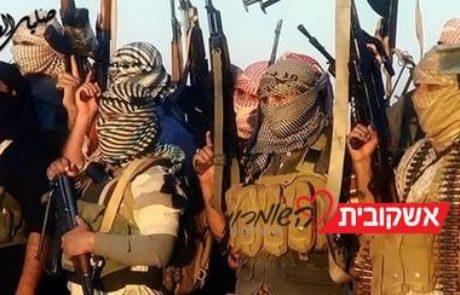 שר התיירות: יש לשלול אזרחות לישראלים המצטרפים לדעאש