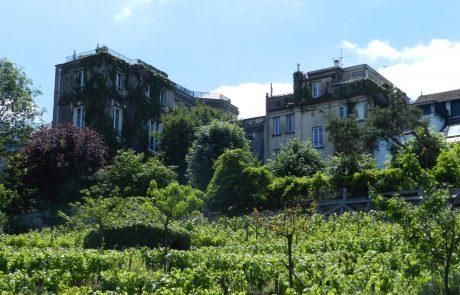 פריז לאחר הקורונה היכן כדאי לבקר ?