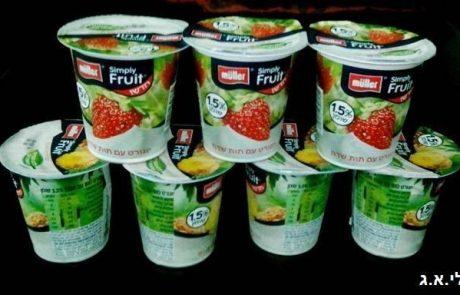 קריר  מענג  גלידת יוגורט מולר