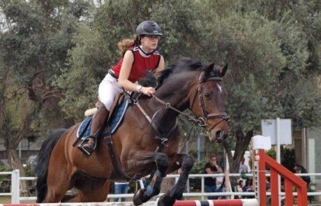 חוויה לכל המשפחה תחרות קפיצות ראווה על סוסים