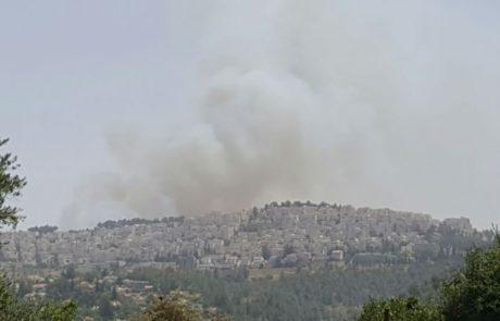 שריפת ענק ביער ירושלים