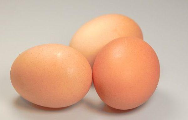 מדריך לצרכן  לרכישת ביצים