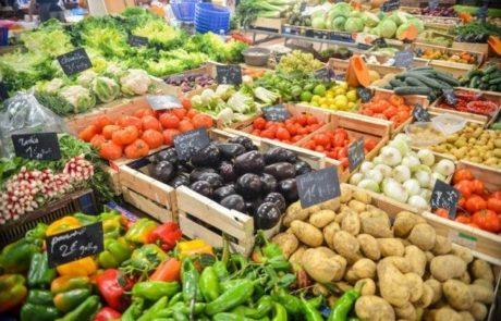 יבואני המזון הגדולים הרוויחו ב-2013 כחצי מיליארד