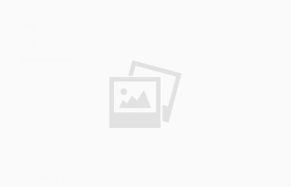 מדליית זהב למאגמה 2012 של יקב בזלת הגולן
