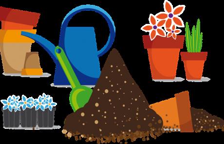 המדריך לגידול צמחי תבלין וגן במרפסת הבית
